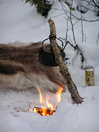 Wilderness Lunch Sled Dog Tour